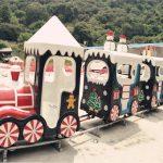 Amusement Park Christmas Track Train For Sale