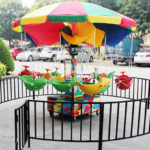 Backyard Amusement Rides for Sale
