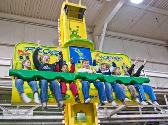 seven seater kiddie frog hopper ride