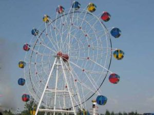 Carnival ferris wheel rides for sale for fun