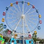 Ferris Wheels for Sale