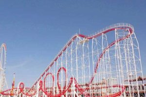 6 Ring Roller Coaster Rides for Sale