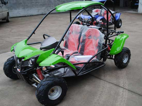 2 Seater Gas Powered Go Karts
