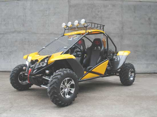Gas Go Karts With 110 cc