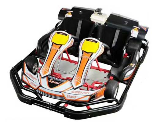 Two Seater Go Karts for Sale