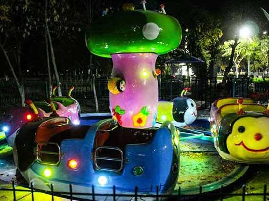 Ladybbug Kiddie Rides In Uzbekistan Theme Park
