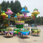 More Information About Amusement Rides Company